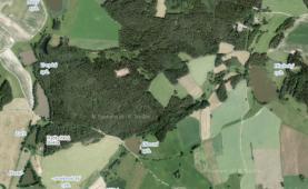 Prodej, les 92068 m2, Ratiboř