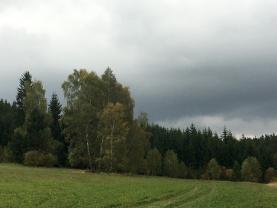 Prodej, les, 11092 m2, Raná u Hlinska