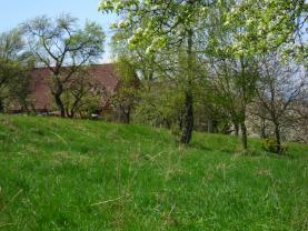Prodej, louka, 1620 m2, Vesec pod Kozákovem - Prackov