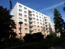 Prodej, byt 3+1, 65 m2, Rychnov nad Kněžnou