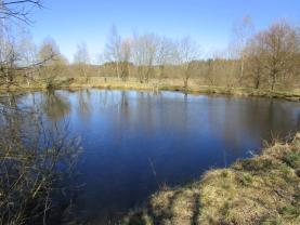 Prodej, vodní plocha, 2598 m2, Mostek u Křižovatky