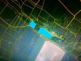 Prodej, les, 13700 m2, Mělnické Vtelno