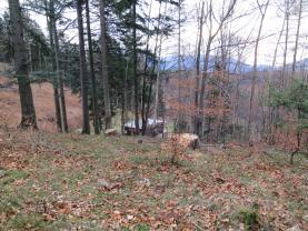 Prodej, les, 11522 m2, Kunčice pod Ondřejníkem