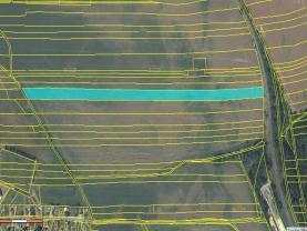 Prodej, pole, 37299 m2, Lišany
