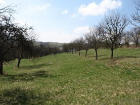 (Prodej, stavební pozemek, 800 m2, Jasenná), foto 2/9