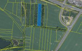Prodej, orná půda, 47546 m2, Drhovle, Pamětice