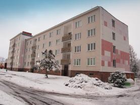 Prodej, byt 1+1, 40 m2, Lázně Kynžvart, Krátká