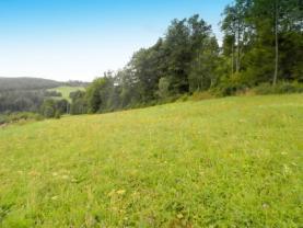 P8220060 (Prodej, pozemek, 3796 m2, Holčovice - Dlouhá Ves), foto 3/7