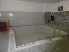 DSC00425 (Pronájem, wellness, 400 m2, Havířov - Prostřední Suchá), foto 4/15