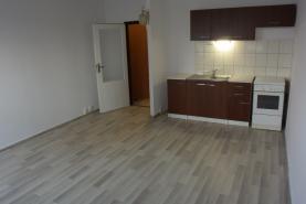 Pronájem, byt 1+kk, 30 m2, Havířov, ul. Střední