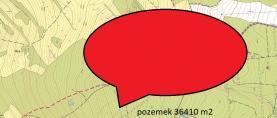Prodej, les, 36410 m2, Merboltice u Děčína