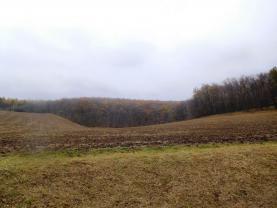 Prodej, orná půda, 6525 m2, Morkůvky, okr. Břeclav