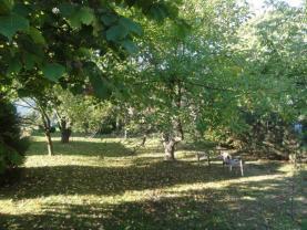 016 (Prodej, zahrada, 965 m2, Hoštálkovice), foto 2/7