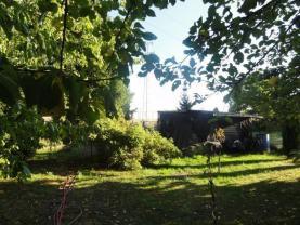 008 (Prodej, zahrada, 965 m2, Hoštálkovice), foto 4/7