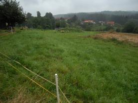 Prodej, pozemek, 4000 m2, Holín, Pařezská Lhota