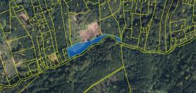 Prodej, les, 10977 m2, Šumburk nad Desnou