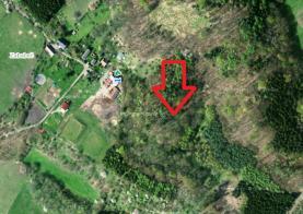 Prodej, les, 15701 m2, Třebušín - Zababeč