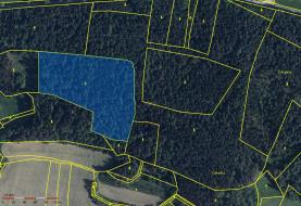 Prodej, les, 24694 m2, Hoslovice - Hodějov, okr.Strakonice
