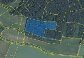 Prodej, les, 15728 m2, Malenice, okr. Strakonice