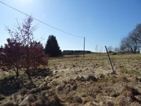 (Prodej, pozemek, 2846 m2, Skalná - Starý Rybník), foto 3/7