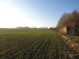 Prodej, orná půda, 810 m2, Cheb - Háje