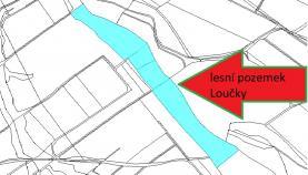 Prodej, les, 29849 m2, Svatý Jiří-Loučky