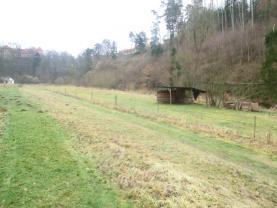 Pronájem, pastviny, 8000 m2, Bechyně
