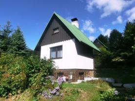 Prodej, chata, 628 m2, Olešnice v Orl. h.