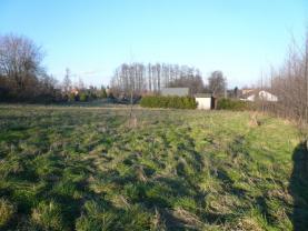 (Prodej, pozemek, 3737 m2, Dětmarovice), foto 4/8
