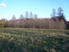 (Prodej, pozemek, 3737 m2, Dětmarovice), foto 2/8