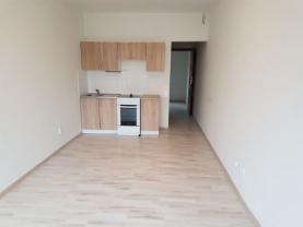 Pronájem, byt 2+kk, 28 m2, Ostrava, ul. Na Vizině