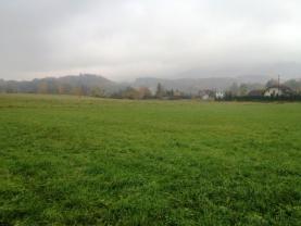 IMG_3189 (Prodej, pozemek, 764 m2, Janovice), foto 3/6