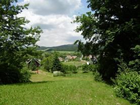 Pohled na pozemek (Prodej, pozemek, 4561 m2, Brantice), foto 3/4