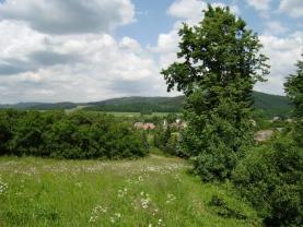 Pohled na pozemek (Prodej, pozemek, 4561 m2, Brantice), foto 4/4