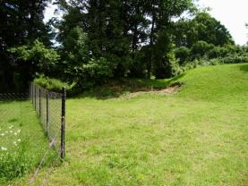 Pohled na pozemek (Prodej, pozemek, 4561 m2, Brantice), foto 2/4