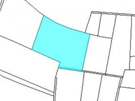 (Prodej, les, 8963 m2, Konárovice), foto 2/3
