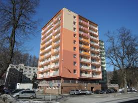 Prodej, byt 3+1, 73 m2, DV, Desná, ul. Krkonošská