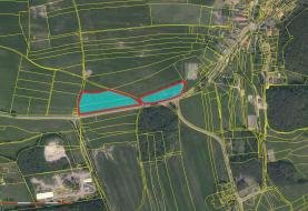Prodej, pozemek, 18342 m2, Vejvanov