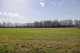 (Prodej, pole, 43051 m2, Hnojník), foto 2/4