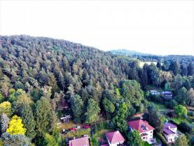 Prodej, les, 4808 m2, Lštění