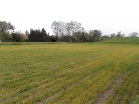 Prodej, pozemek, 8000 m2, Ostrava - Polanka