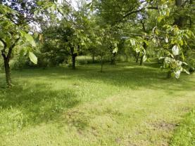 Prodej, pozemek, 800 m2, Krnov