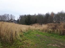 Prodej, pozemek, 5030 m2, Horní Lutyně