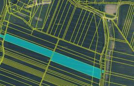 Prodej, pole, 24375 m2, Nedachlebice