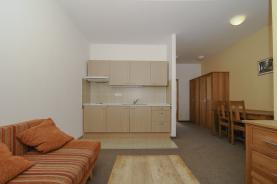 Prodej, byt 1+kk, 26 m2, Monínec, Sedlec-Prčice