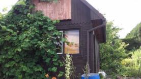 Prodej, zahrada a chatka, 372 m2, Šumperk