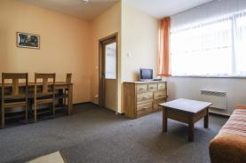 (Prodej , byt 1+kk , 49 m2, Monínec, Sedlec-Prčice), foto 3/19