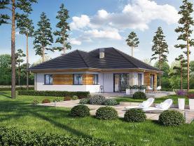 Prodej, rodinný dům 4+1, 979 m2, Lhotky u Malotic