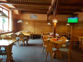 Prodej, restaurace, 250 m2, Opava - Předměstí