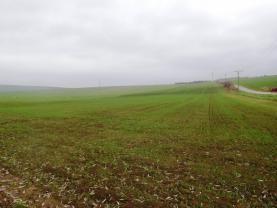 Prodej, orná půda, 15641 m2, Dambořice